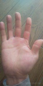 40代男性の手のひら画像右手