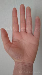 40代女性の手のひら画像左手