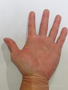 50代男性の手のひら画像左手
