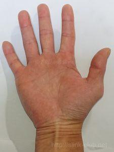 50代男性の手のひら画像右手