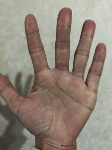 左手40代女性の手のひら画像左手
